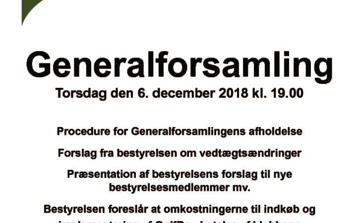 thumbnail of Bestyrelsens forslag til generalforsamlingen 6 december 2018